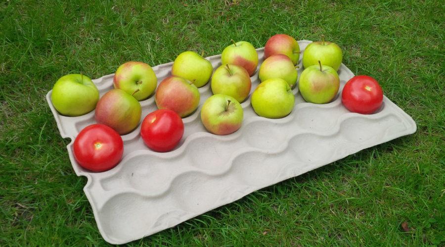 wytłaczanka do jabłek oraz do jajek - przykład
